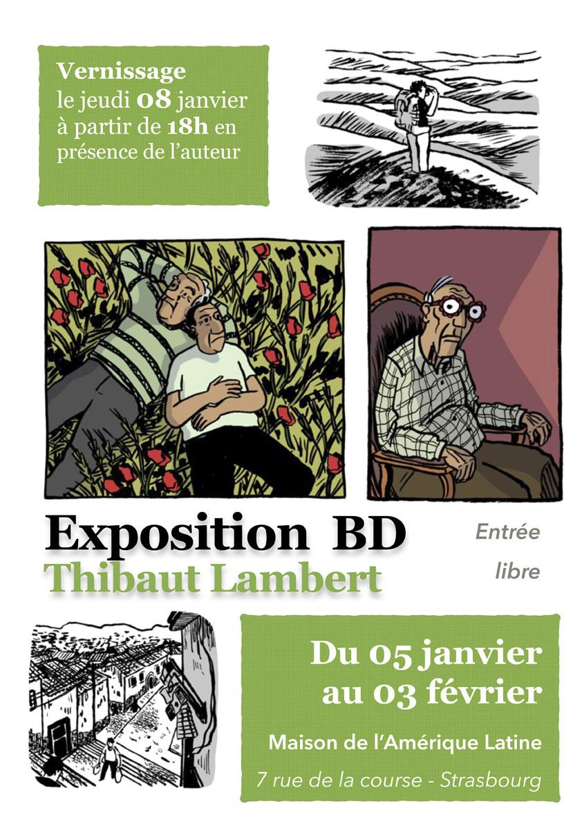 Exposition Thibaut Lambert - Strasbourg, Maison de l'Amérique Latine (5 janvier / 3 février 2015)